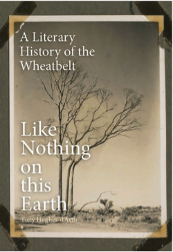 Like Nothing on this Earth book cover