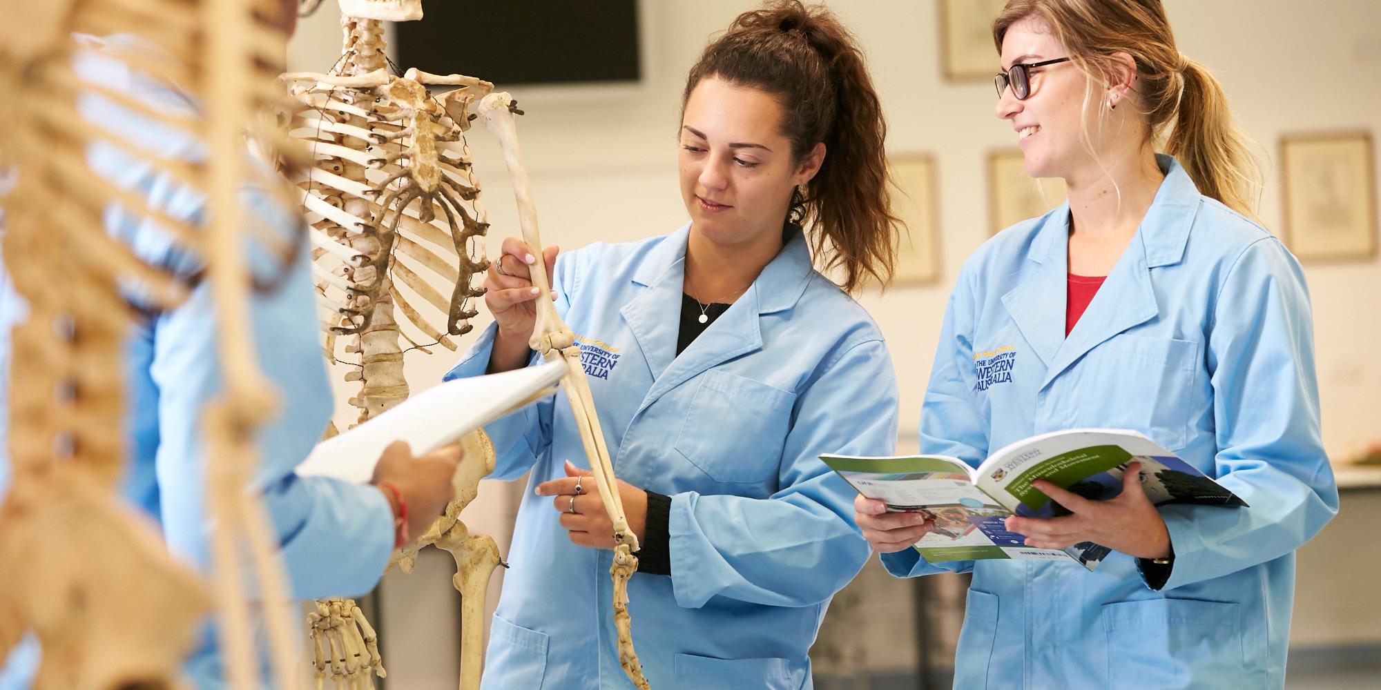 PhD students examining a skeleton