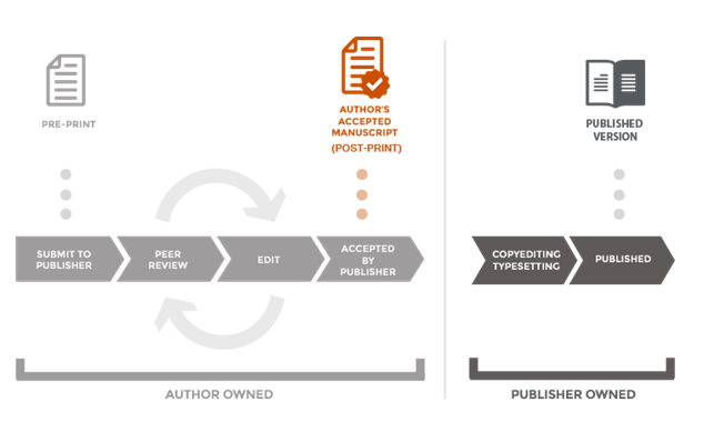 Infographic of publication versions produced during the publication process