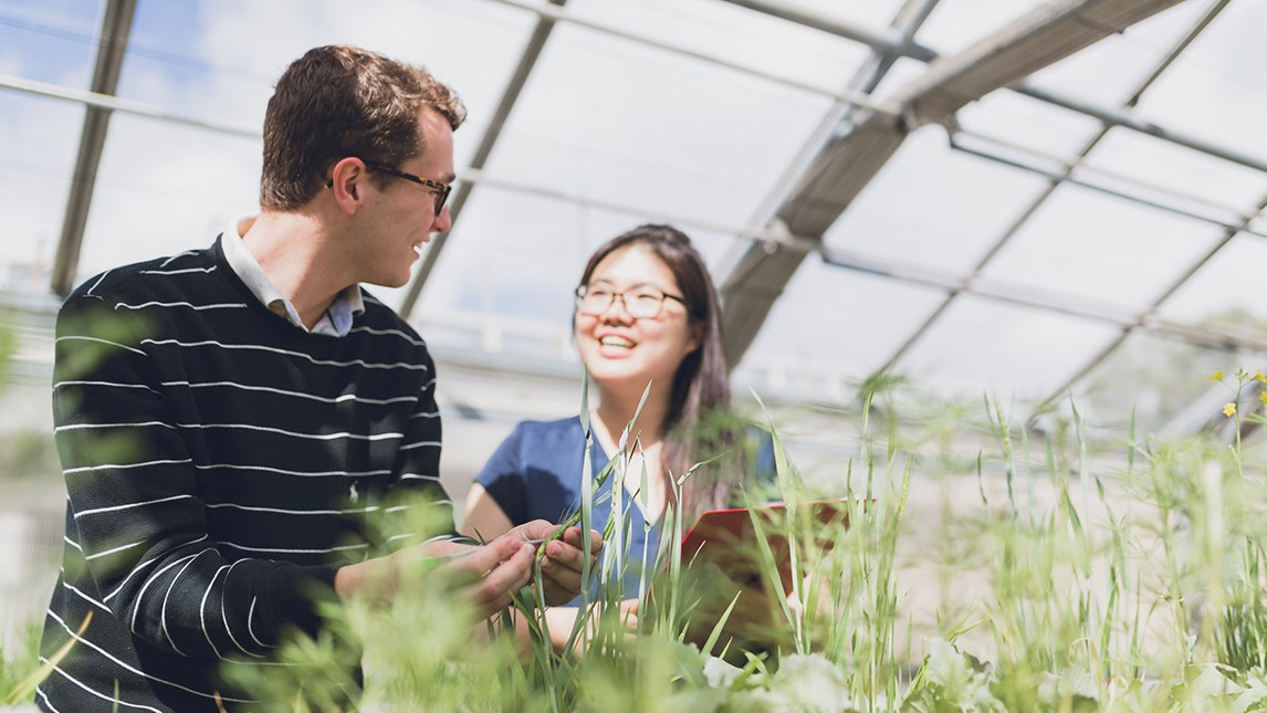 Agriculture students in glasshouse