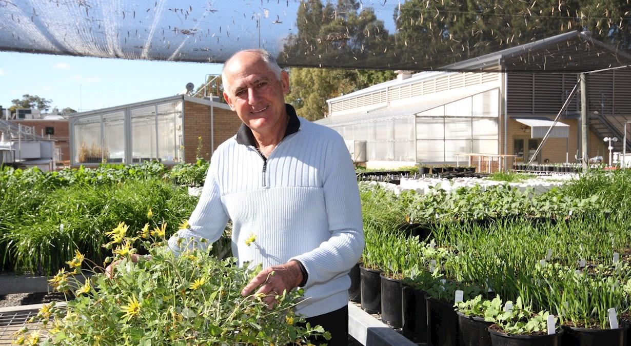 Stephen Powle with plant in greenhouse